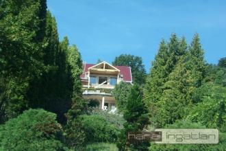 Nagymaros Eladó Ház (#0106202057)